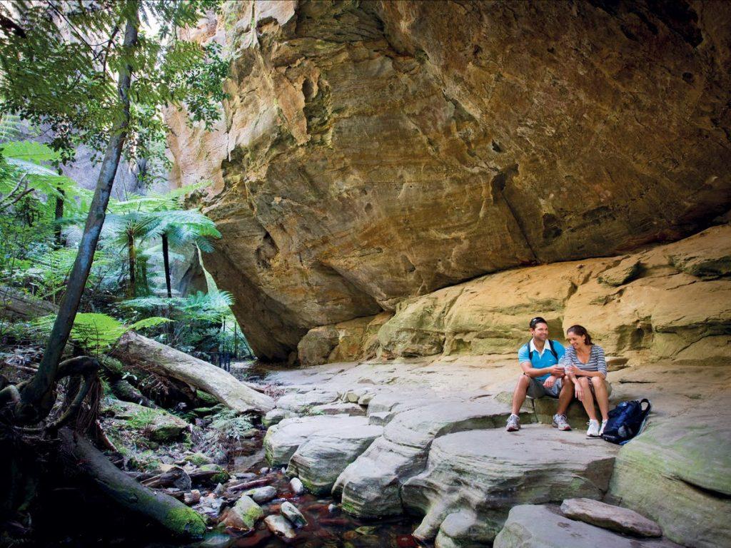 8 Educational Tours and Safaris That Showcase Australia's History Kangaroo Bus Lines