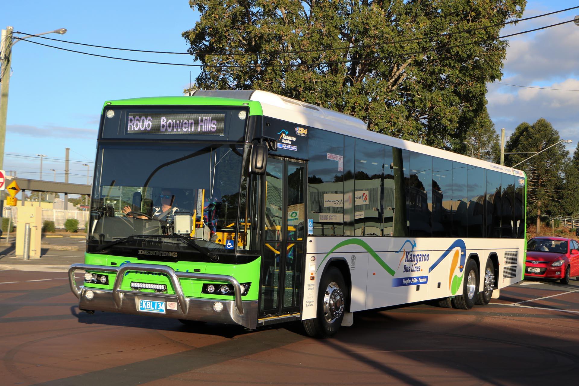 Public Transport Kangaroo Bus Lines